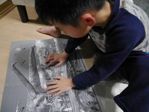 恐竜ボードゲームの裏のイラストを見る男の子