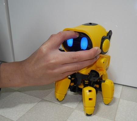 ロボット・フォロのおでこのスイッチに触る手
