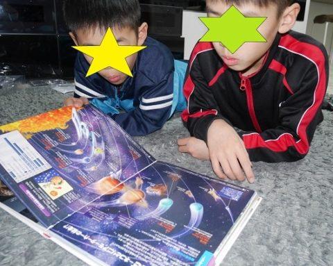 くらべる図鑑を読む小学生の兄弟