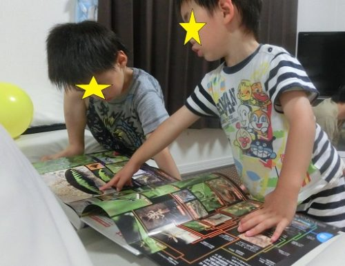 昆虫図鑑を熱心に読む幼児の男の子