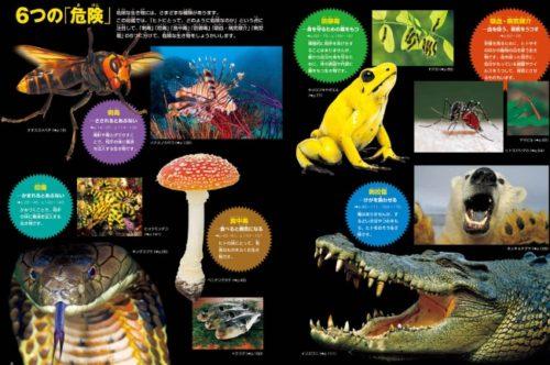 小学館の図鑑危険生物解説ページ内容