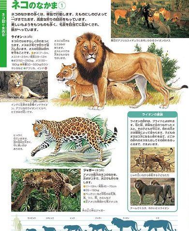 小学館の図鑑ネオの動物の口コミ