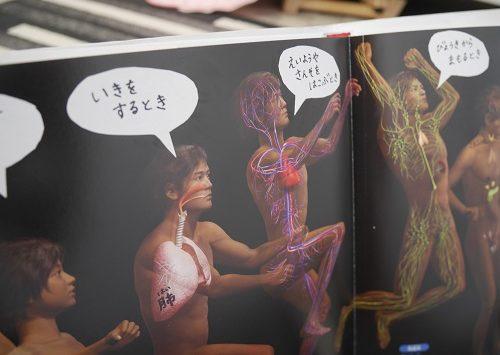 小学館の図鑑NEOの「人間・いのちの歴史」の見開きページ