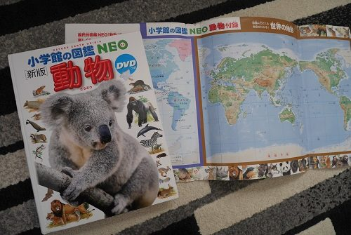 小学館の図鑑ネオの動物の感想
