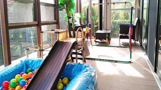 祖父母の家にボールプールと鉄棒とすべり台