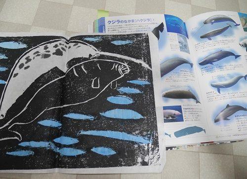 小学館ネオの動物図鑑を参考に版画を彫る