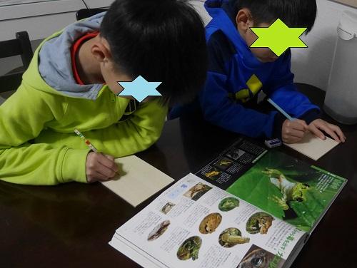 家で版画をつくるときに図鑑の写真を見て彫っている小学生