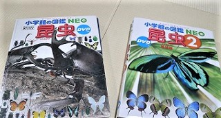 小学館の図鑑NEOの昆虫と昆虫2の比較
