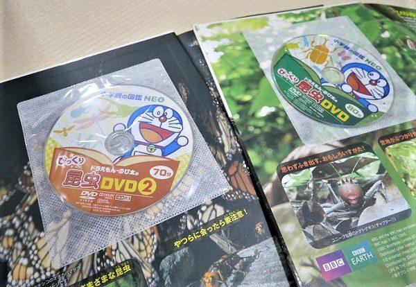 小学館の図鑑neoの『昆虫』「昆虫2」の付録DVD