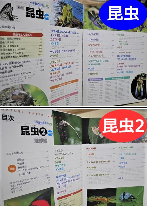 小学館の「昆虫図鑑」と「昆虫2」目次ページの違い