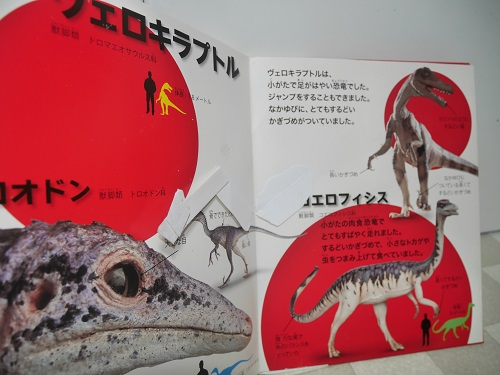 飛び出す図鑑恐竜のプエロキラプトルのページ