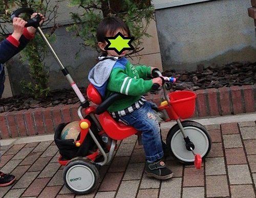 押し棒付きの三輪車に乗る1歳の子供
