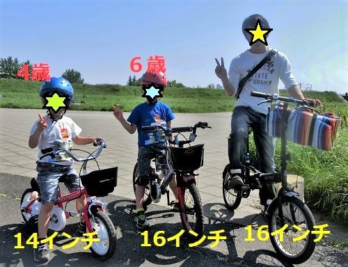14インチと16インチの自転車のサイズ感