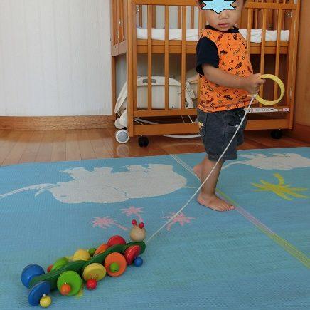 引っ張るおもちゃ、プルトイを引いて遊ぶ1歳の男の子