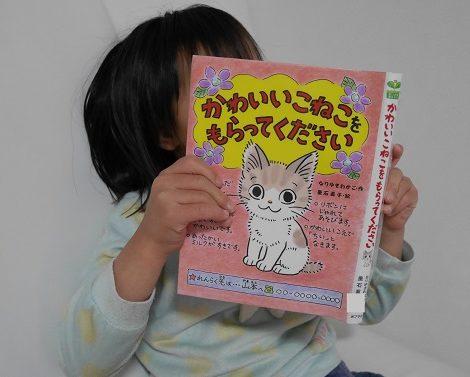 かわいいこねこをもらってくださいを読んでいる女の子