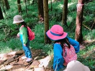 林の中をリュックを背負ってハイキングしている子供